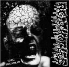 AGATHOCLES / DISORDER split 10 (POWER IT UP)